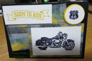 One-Wild-Ride-Challenge-300x199